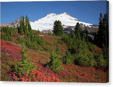Jamie Canvas Print - Usa, Washington State, Mount Baker by Jamie and Judy Wild