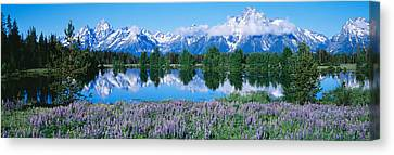 Usa, Wyoming, Grand Teton Park Canvas Print by Panoramic Images