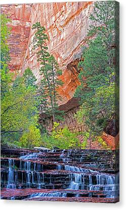 Zion National Park Canvas Print - Utah, Zion National Park, Water by Jamie and Judy Wild