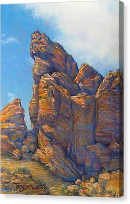 Valley Of Fire Canvas Print by Tanja Ware