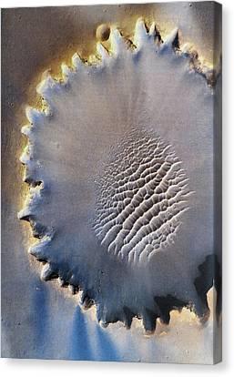 Victoria Crater Canvas Print by Patricia Januszkiewicz