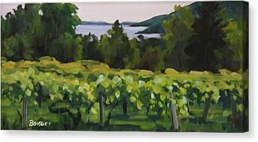 Vineyard Morning Canvas Print