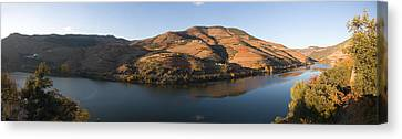 Vineyards At The Riverside, Cima Corgo Canvas Print