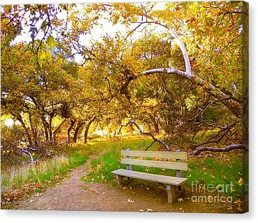 Visionary's Path Canvas Print by Gem S Visionary