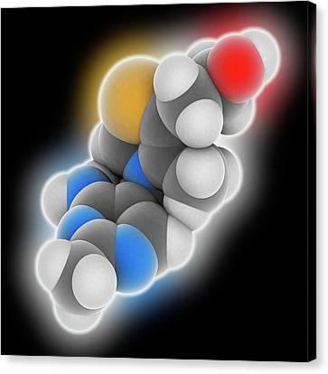 Vitamin B1 Thiamine Molecule Canvas Print by Laguna Design