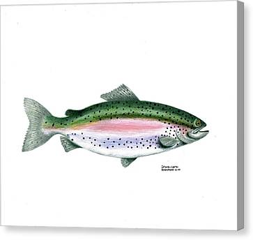 Wallace Brantley Sport Fishing Series Rainbow Trout Canvas Print by Sharon Blanchard