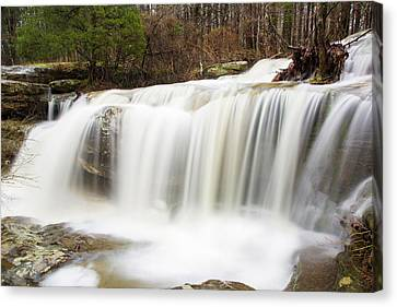 Water Falling From Rocks In A Forest Canvas Print by Panoramic Images