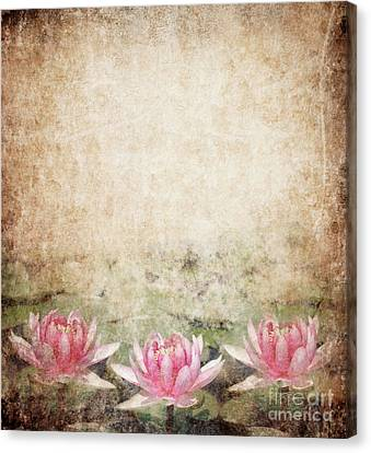 River Canvas Print - Water Lily by Jelena Jovanovic