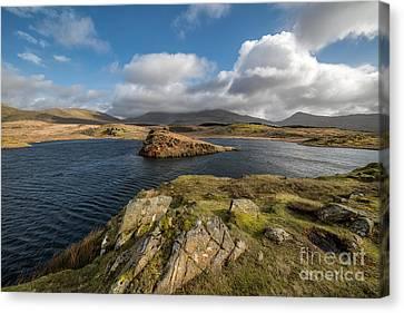 Llyn Y Dywarchen Canvas Print - Welsh Lake by Adrian Evans