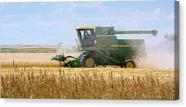 Wheat Harvest Canvas Print by Jim West
