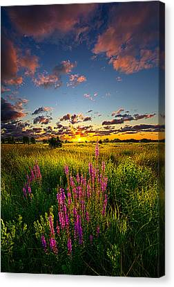 Whispers Canvas Print by Phil Koch
