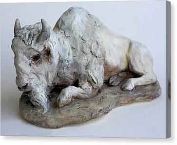 White Buffalo-sculpture Canvas Print by Derrick Higgins