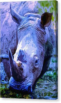 One Horned Rhino Canvas Print - Rhinoceros by Brian Stevens