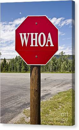 Whoa Stop Sign Canvas Print