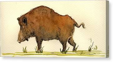 Wild Boar Canvas Print by Juan  Bosco