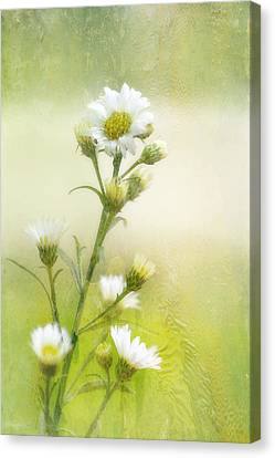 Wild Flowers Canvas Print by Joan Bertucci