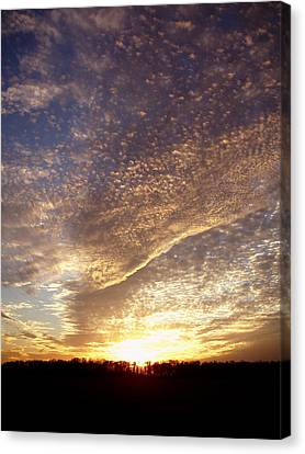 Wild Sky 2 Canvas Print by Cynthia Lassiter