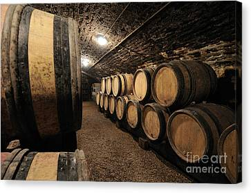 Cellar Canvas Print - Wine Barrels In A Cellar. Cote D'or. Burgundy. France. Europe by Bernard Jaubert