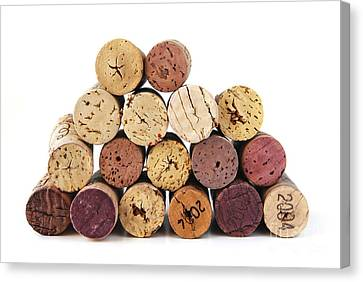 Wine Corks Canvas Print by Elena Elisseeva