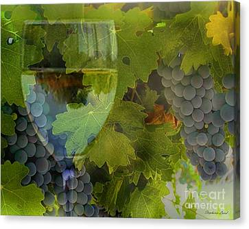 Wine Canvas Print by Stephanie Laird