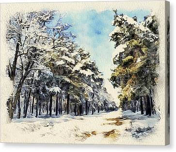 Winter Forest Landscape 37 Canvas Print by Yury Malkov