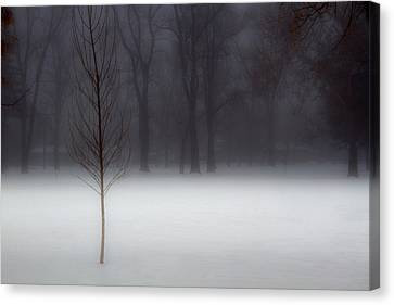 Winter In The Park Canvas Print by Utah Images