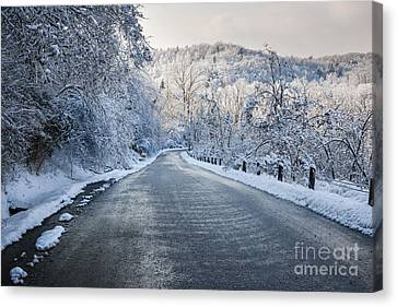 Winter Road Canvas Print by Elena Elisseeva