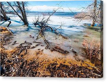 Canvas Print featuring the photograph Winter Shore At Barr Lake by Tom Potter