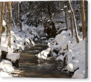 Canvas Print featuring the photograph Winter Stream Win 67 by G L Sarti