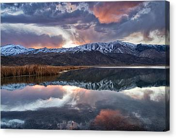 Winter Sunset Canvas Print by Cat Connor