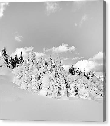 Canvas Print featuring the photograph Winter Time by Frodi Brinks