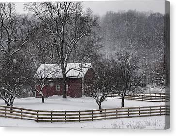 Winter Wonder Canvas Print by Ann Bridges