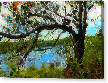 Wishing Tree Canvas Print by Terence Morrissey