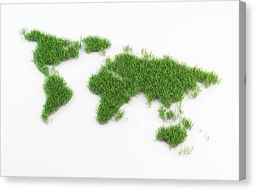 World Map Made Out Of Grass Canvas Print by Andrzej Wojcicki