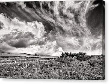 Written In The Wind Canvas Print by William Beuther