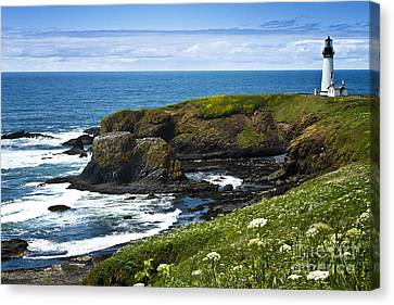 Yaquina Head Lighthouse Canvas Print by Carrie Cranwill