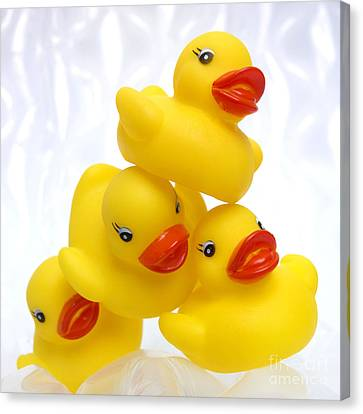 Yelow Ducks Canvas Print by Bernard Jaubert