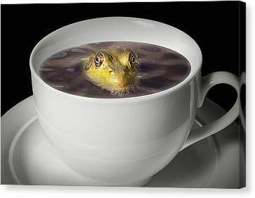 Yikes There Is A Frog In My Java Canvas Print by Randall Nyhof