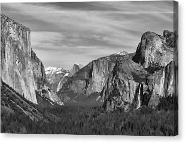 Yosemite Canvas Print by David Gleeson