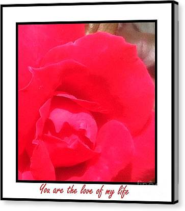 You Are The Love Of My Life By Saribelle Rodriguez Canvas Print by Saribelle Rodriguez