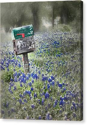 You've Got Mail Canvas Print by David and Carol Kelly