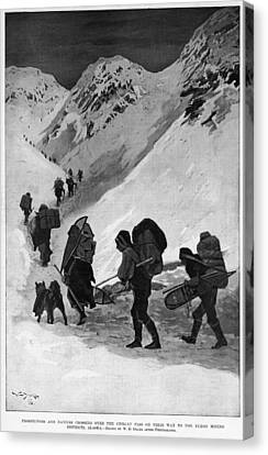 Huskies Canvas Print - Yukon Gold Rush, 1896 by Granger
