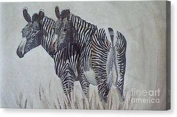 Zebras Canvas Print by Audrey Van Tassell