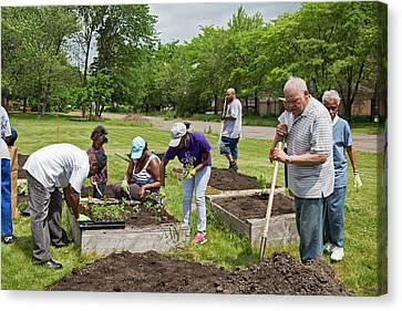 Community Gardening Canvas Print by Jim West