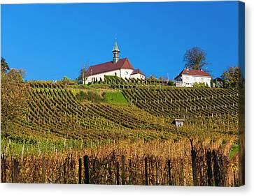 Germany, Baden-wurttemburg, Black Canvas Print