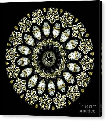 Metalic Canvas Print - Kaleidoscope Ernst Haeckl Sea Life Series by Amy Cicconi