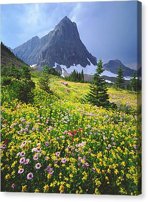High Park Fire Canvas Print - Usa, Montana, Glacier National Park by Jaynes Gallery