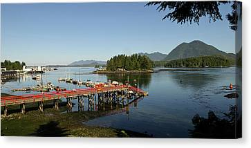 Vancouver Island, Tofino Canvas Print by Matt Freedman