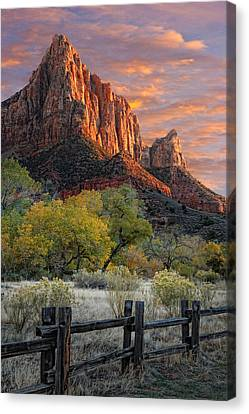 Slickrock Canvas Print - Zion National Park by Utah Images