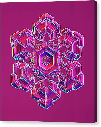 Plate 1 Canvas Print - Snowflake by Kenneth Libbrecht